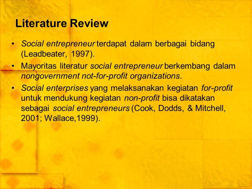 Literature Review Social entrepreneur terdapat dalam berbagai bidang (Leadbeater, 1997).