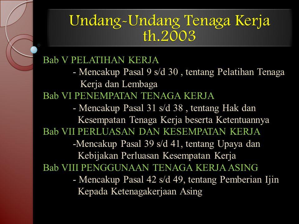Undang-Undang Tenaga Kerja th.2003