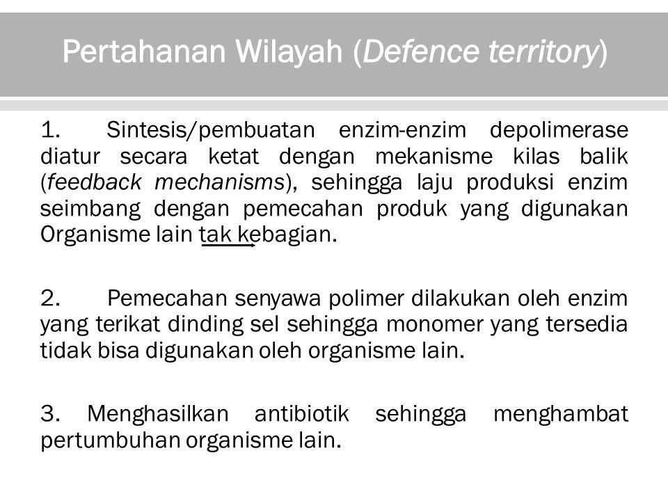 Pertahanan Wilayah (Defence territory)