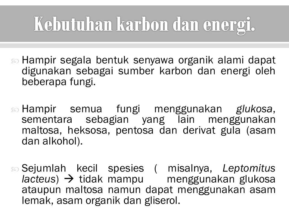 Kebutuhan karbon dan energi.