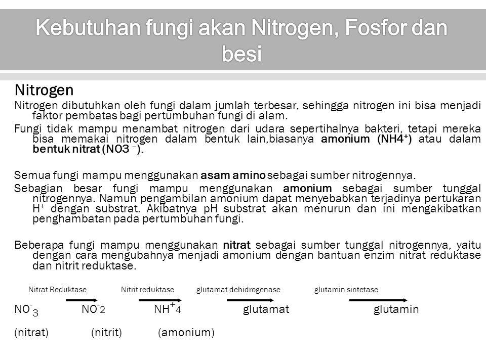 Kebutuhan fungi akan Nitrogen, Fosfor dan besi
