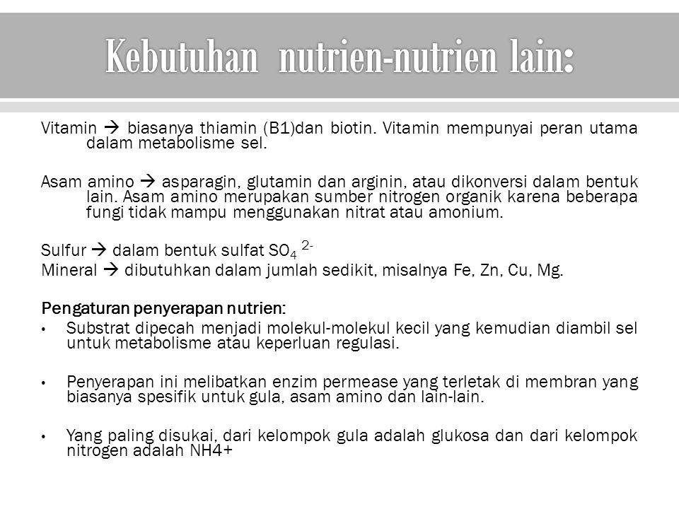 Kebutuhan nutrien-nutrien lain: