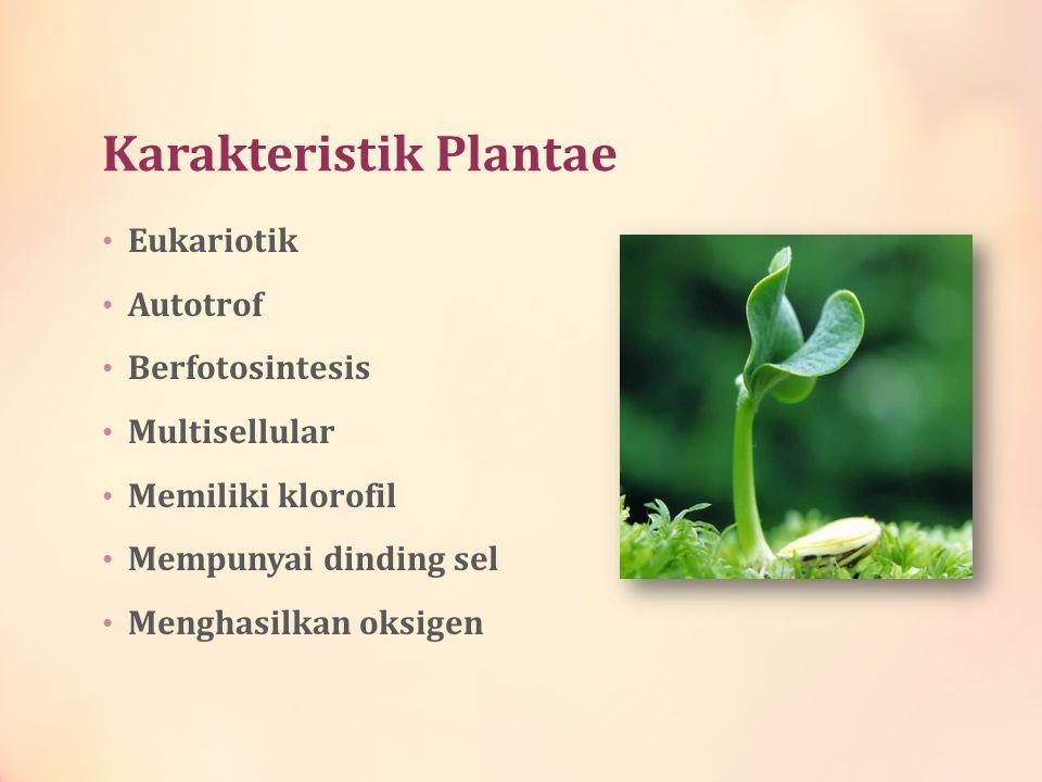 Karakteristik Plantae