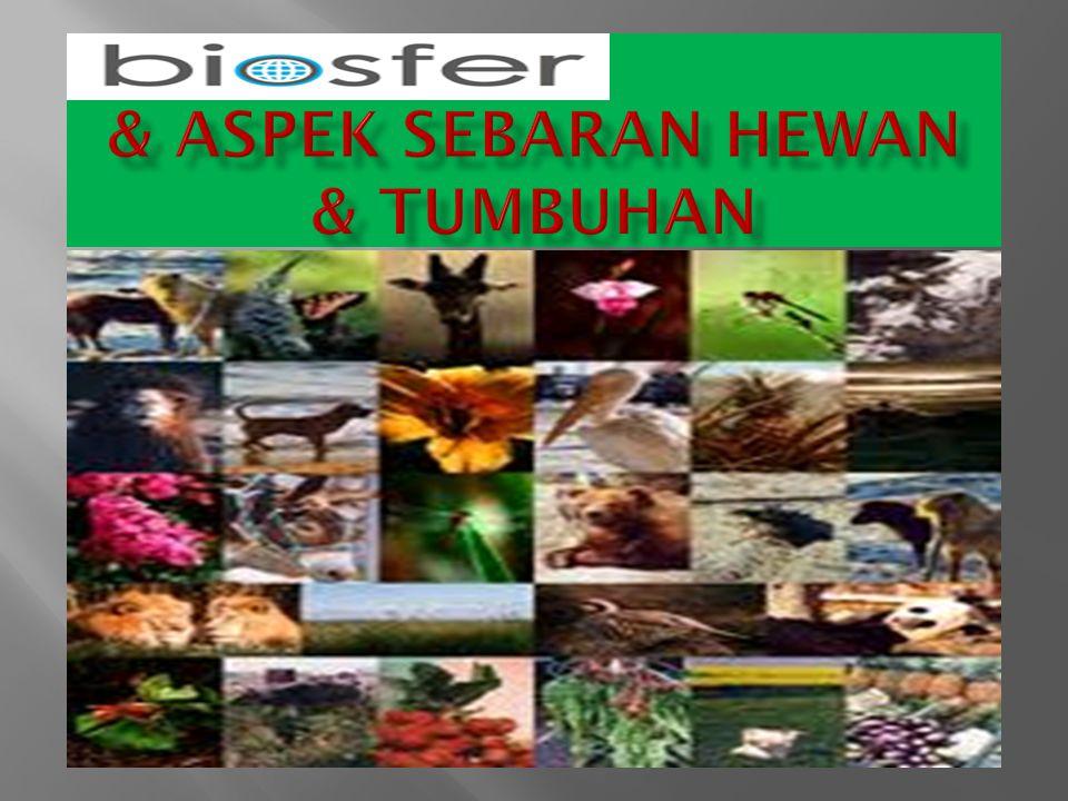 & Aspek sebaran hewan & tumbuhan