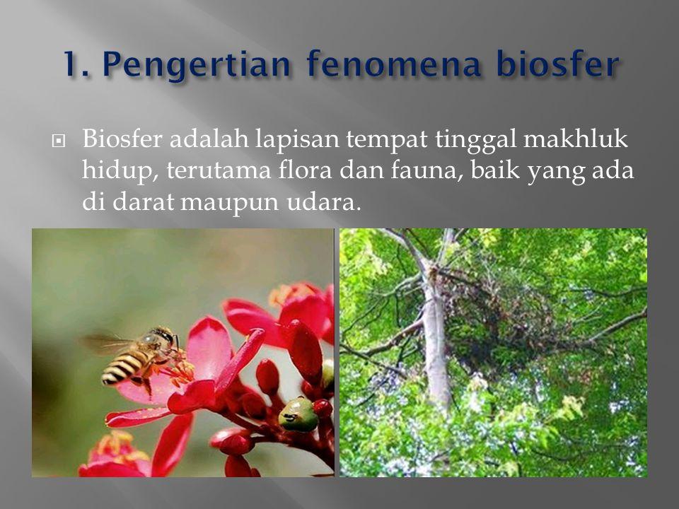 1. Pengertian fenomena biosfer
