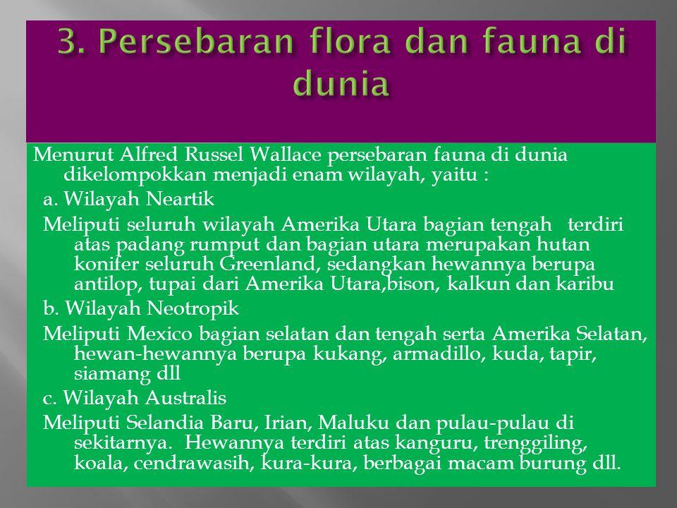 3. Persebaran flora dan fauna di dunia