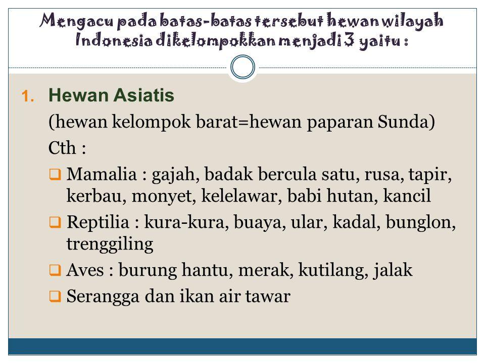 Hewan Asiatis (hewan kelompok barat=hewan paparan Sunda) Cth :
