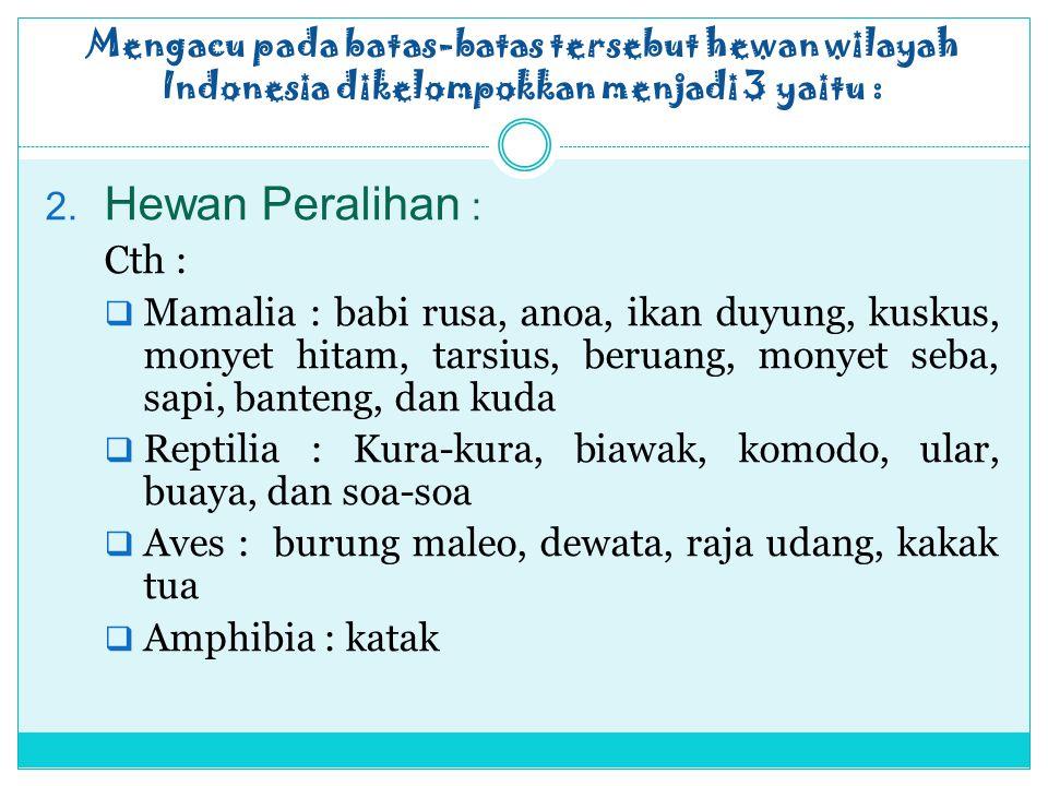 Mengacu pada batas-batas tersebut hewan wilayah Indonesia dikelompokkan menjadi 3 yaitu :