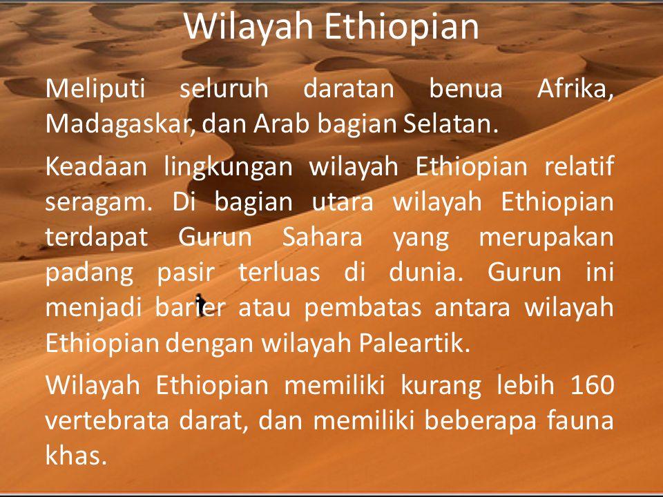 Wilayah Ethiopian