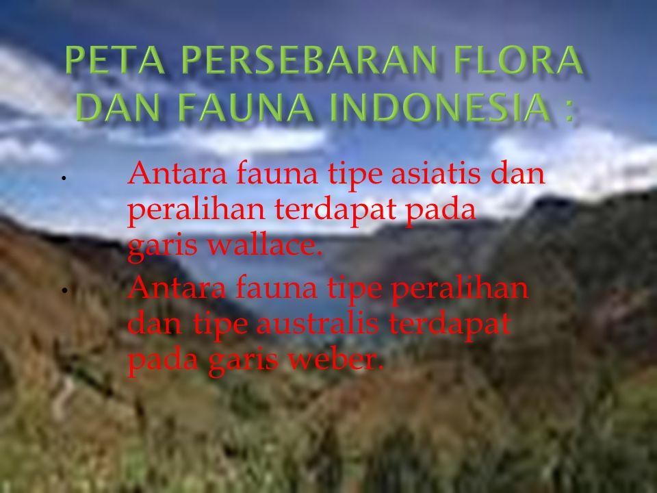 Peta persebaran flora dan fauna Indonesia :