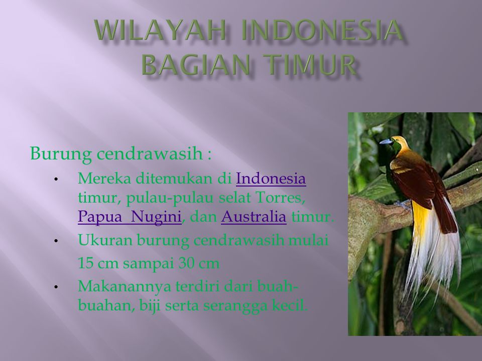 Wilayah Indonesia Bagian Timur