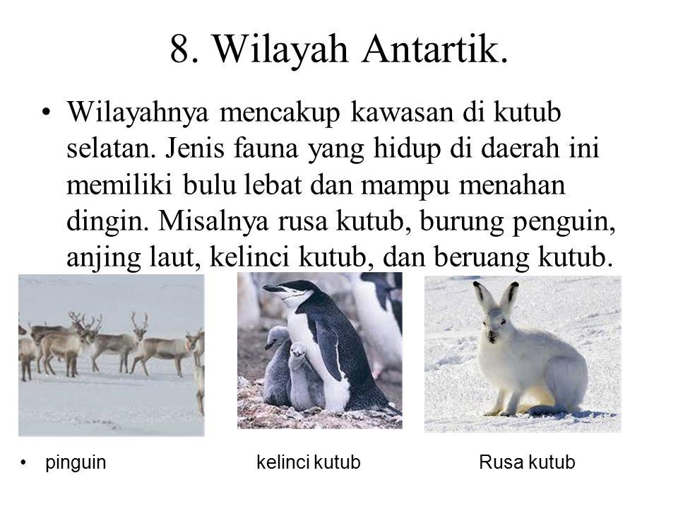 8. Wilayah Antartik.