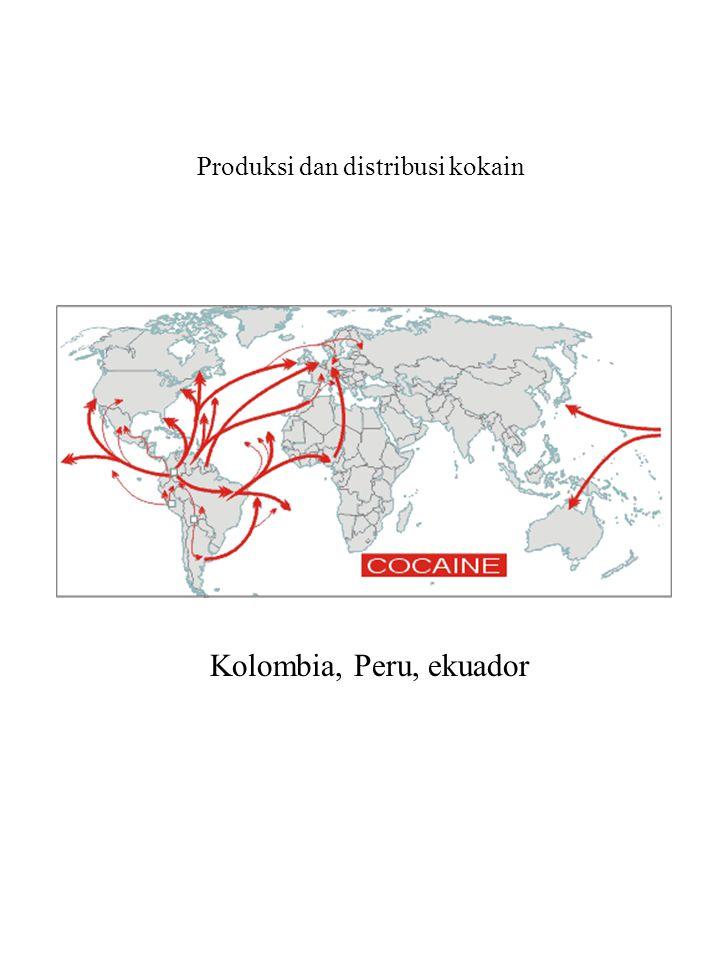 Produksi dan distribusi kokain