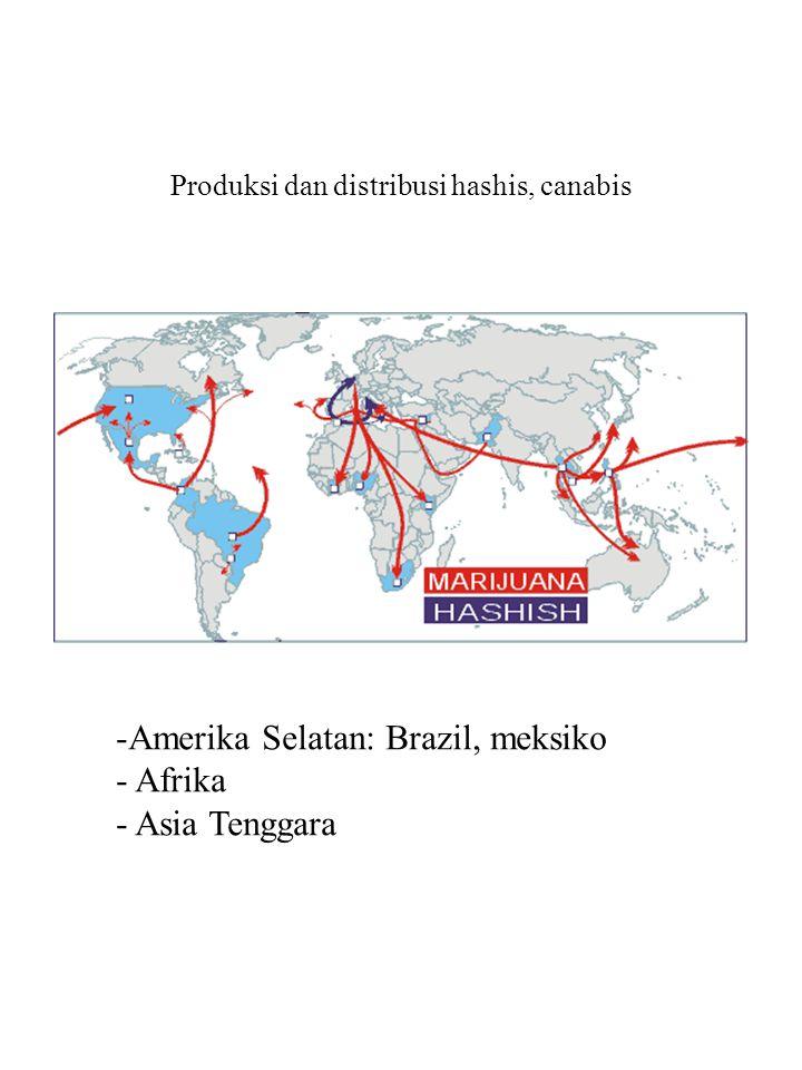 Produksi dan distribusi hashis, canabis