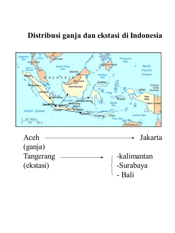 Distribusi ganja dan ekstasi di Indonesia