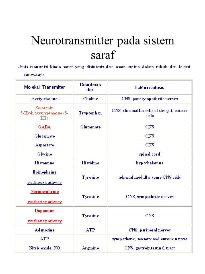Neurotransmitter pada sistem saraf