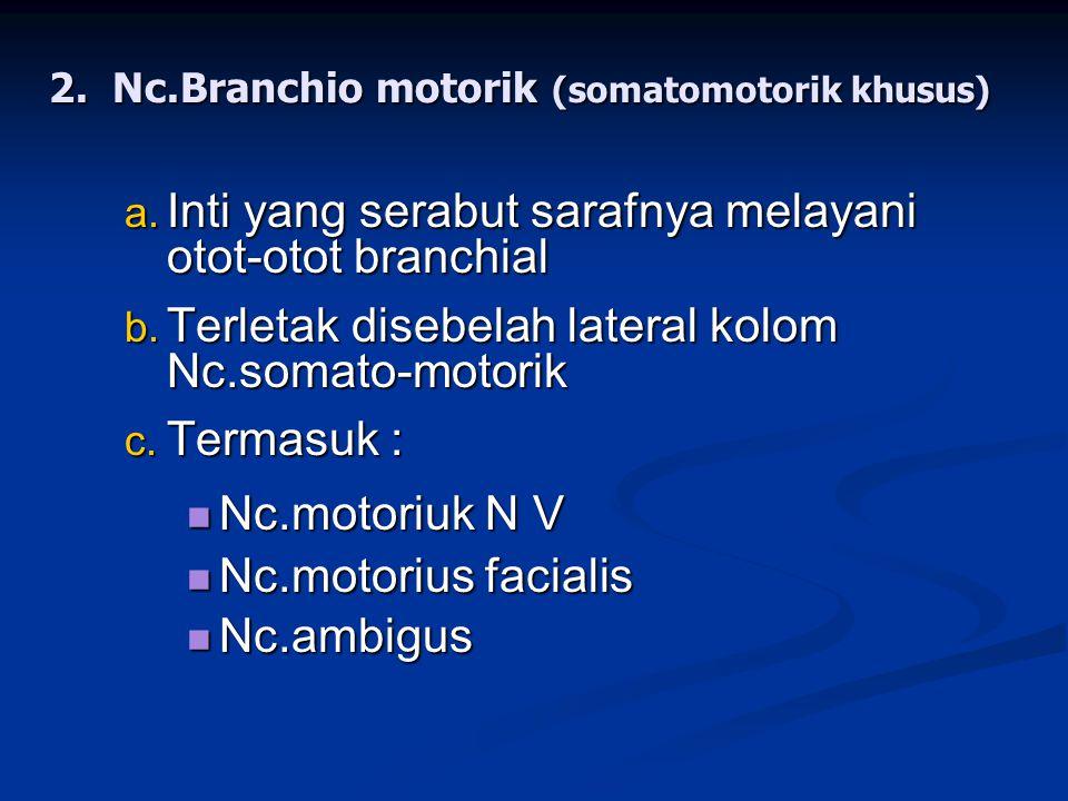 Nc.Branchio motorik (somatomotorik khusus)