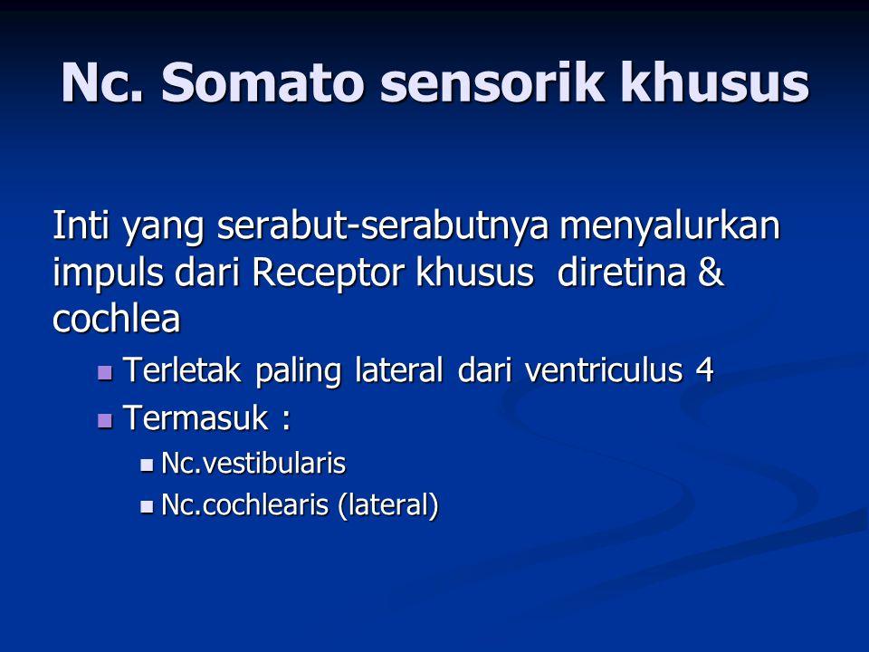 Nc. Somato sensorik khusus
