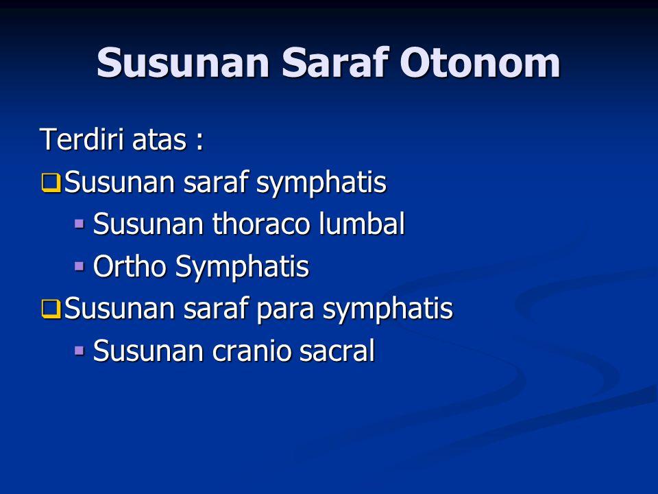 Susunan Saraf Otonom Terdiri atas : Susunan saraf symphatis