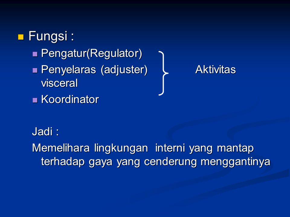 Fungsi : Pengatur(Regulator) Penyelaras (adjuster) Aktivitas visceral