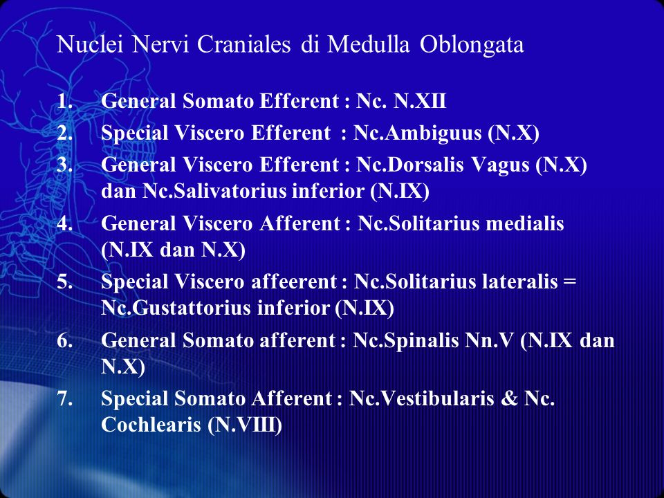 Nuclei Nervi Craniales di Medulla Oblongata
