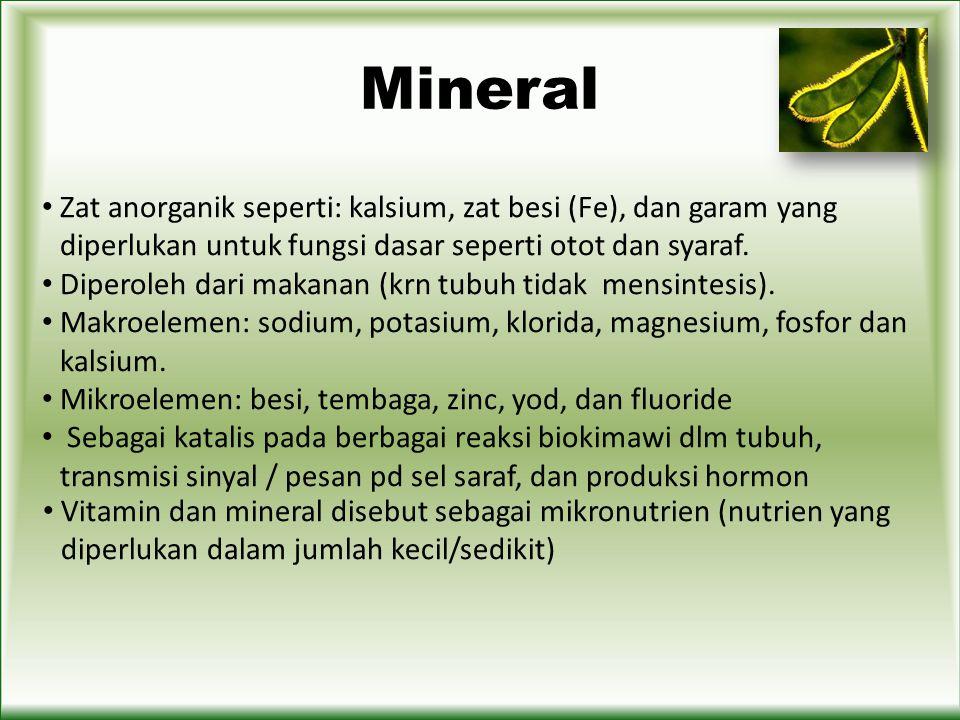 Mineral Zat anorganik seperti: kalsium, zat besi (Fe), dan garam yang diperlukan untuk fungsi dasar seperti otot dan syaraf.