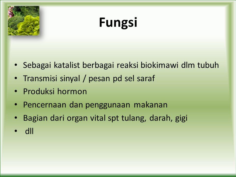 Fungsi Sebagai katalist berbagai reaksi biokimawi dlm tubuh