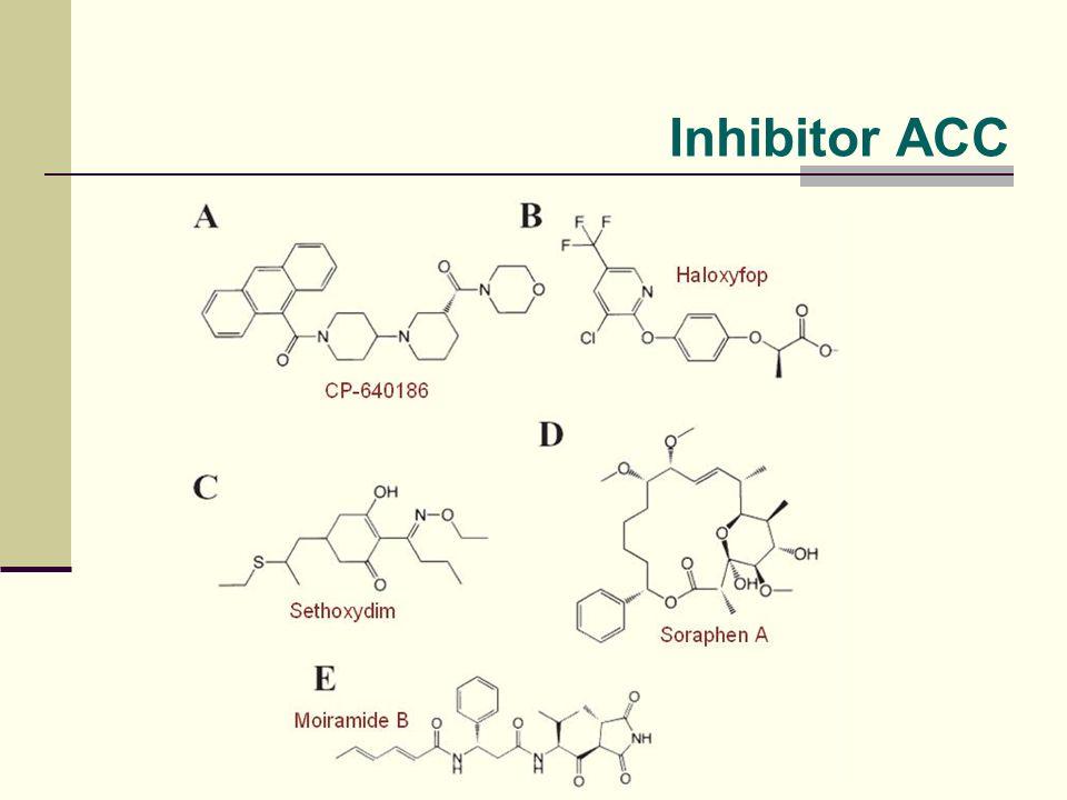 Inhibitor ACC