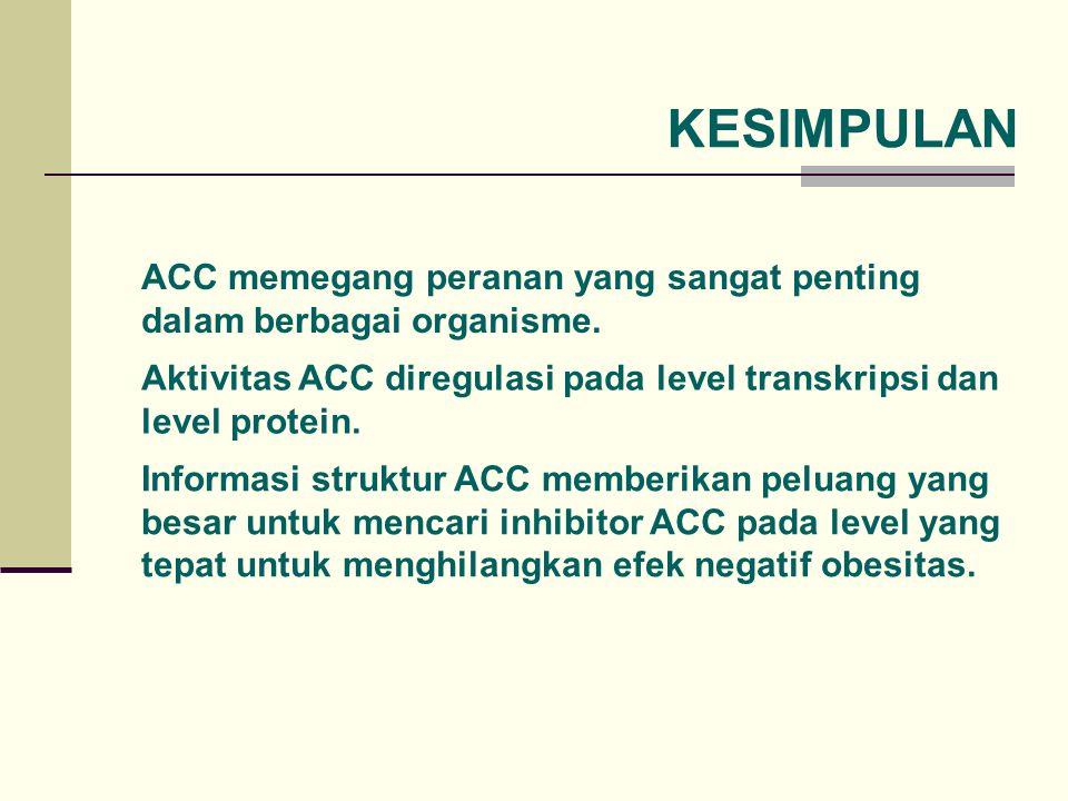 KESIMPULAN ACC memegang peranan yang sangat penting dalam berbagai organisme. Aktivitas ACC diregulasi pada level transkripsi dan level protein.