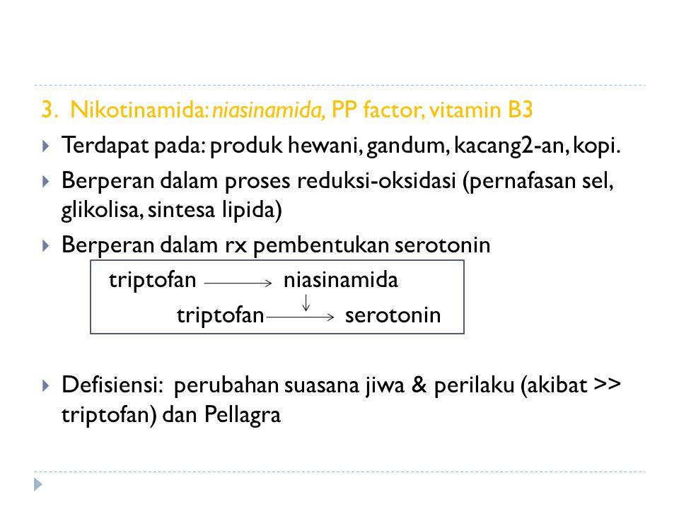 3. Nikotinamida: niasinamida, PP factor, vitamin B3