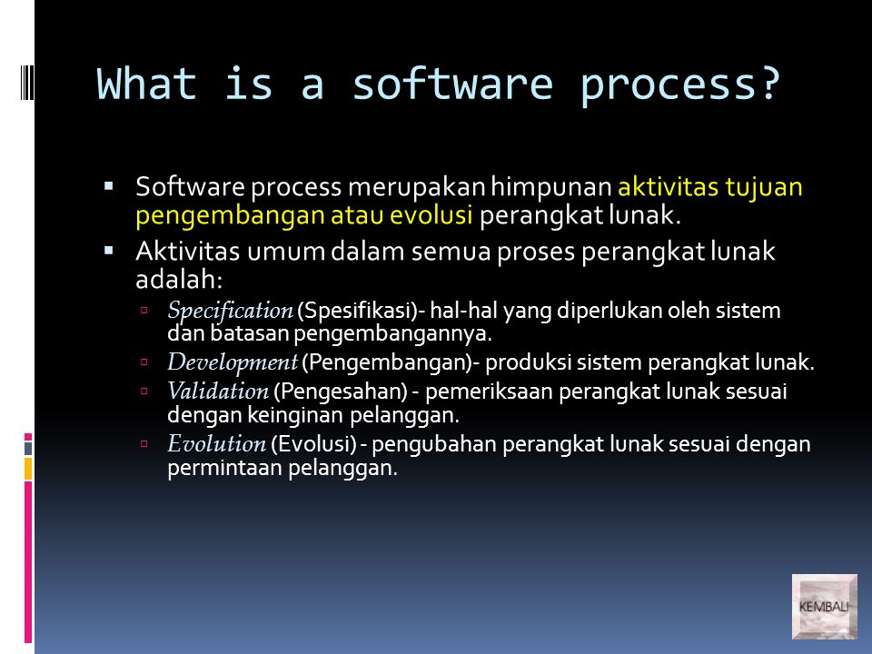 What is a software process