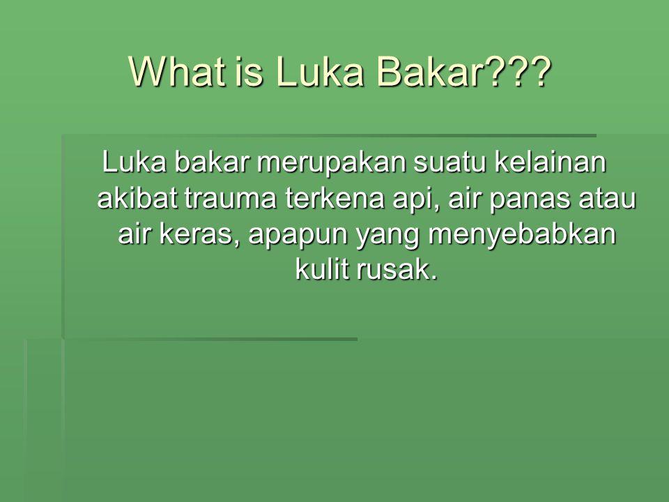 What is Luka Bakar .