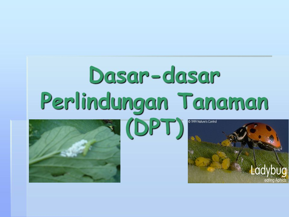 Dasar-dasar Perlindungan Tanaman (DPT)