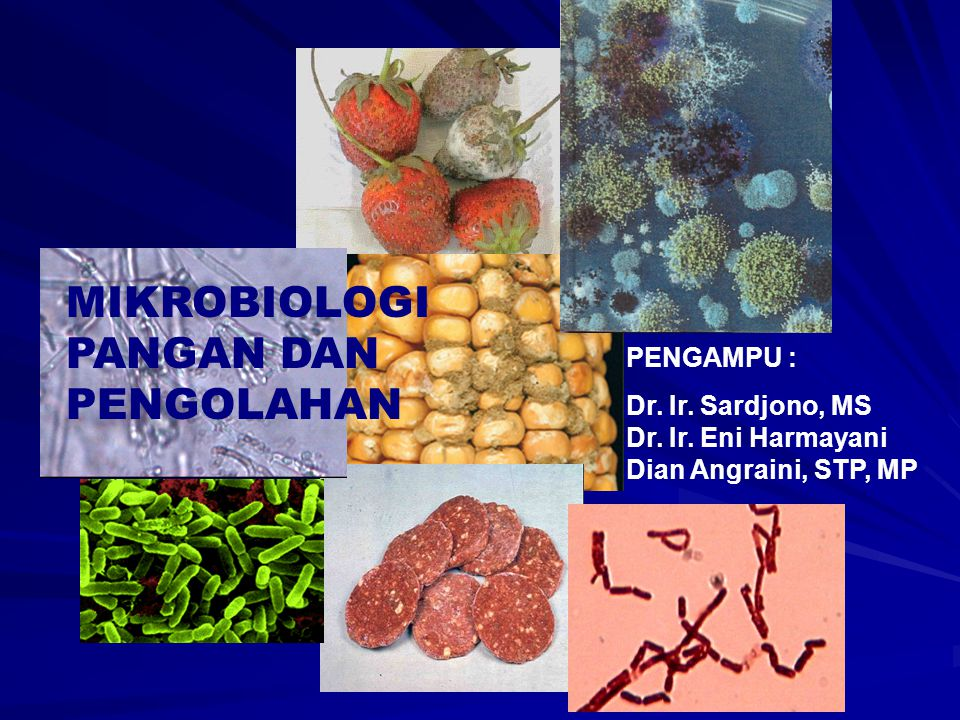 MIKROBIOLOGI PANGAN DAN PENGOLAHAN