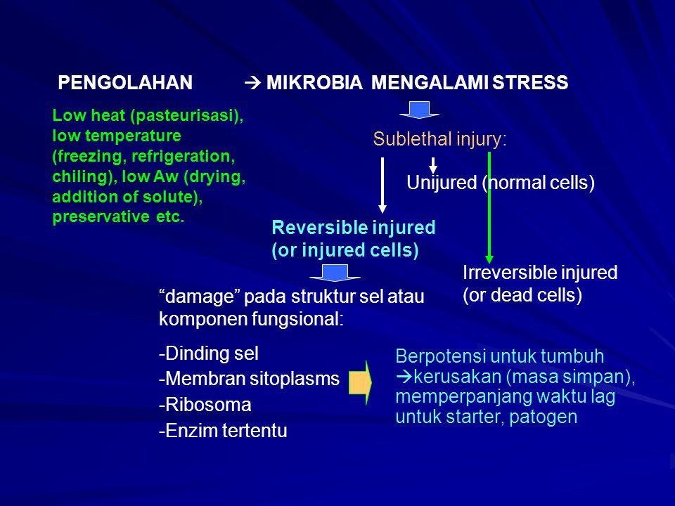 PENGOLAHAN  MIKROBIA MENGALAMI STRESS