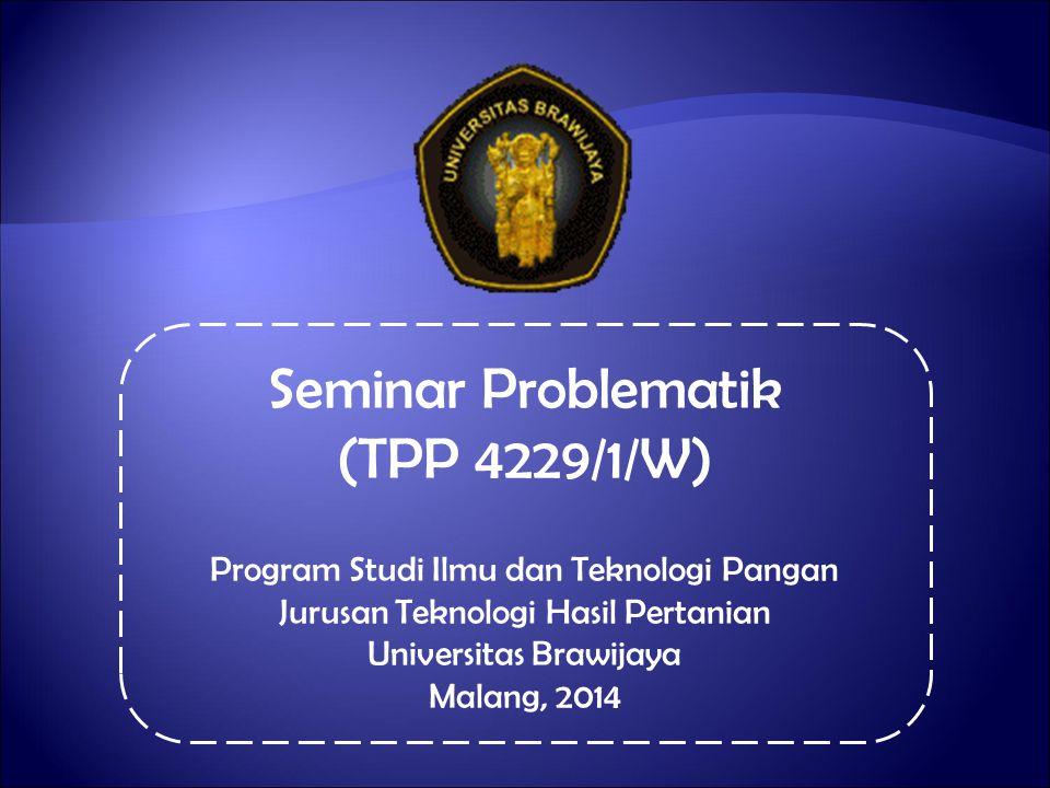 Seminar Problematik (TPP 4229/1/W)