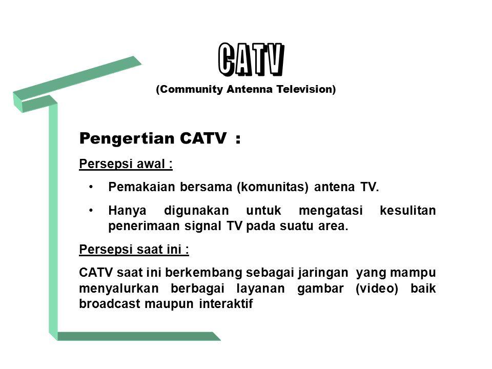 (Community Antenna Television)