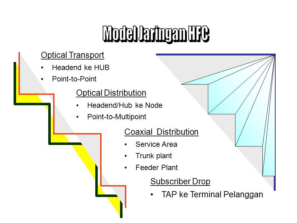 Model Jaringan HFC Optical Transport Optical Distribution