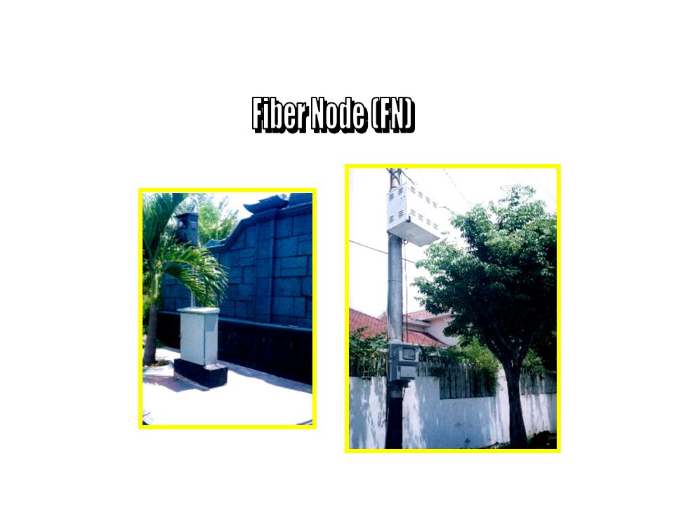 Fiber Node (FN)