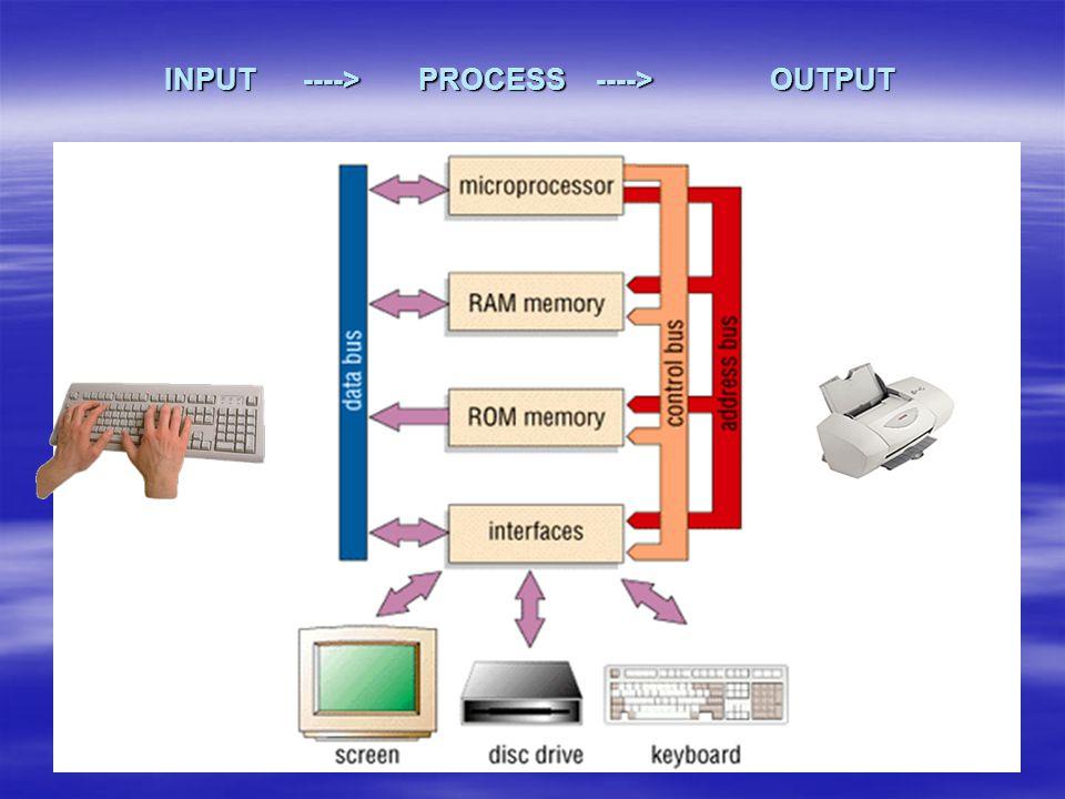 INPUT ----> PROCESS ----> OUTPUT