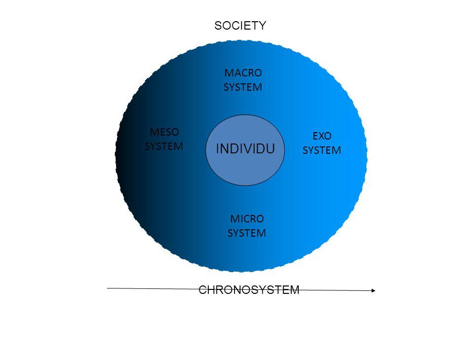 INDIVIDU SOCIETY MACRO SYSTEM MESO EXO SYSTEM SYSTEM MICRO SYSTEM