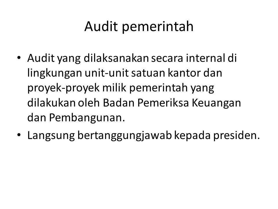 Audit pemerintah