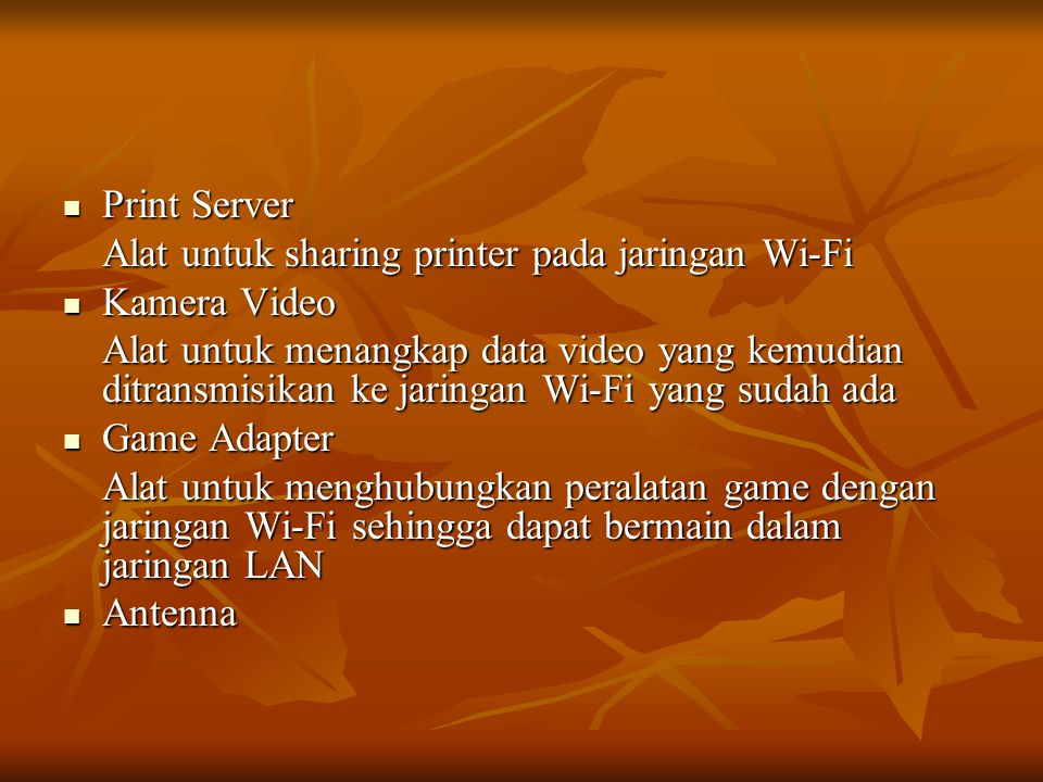 Print Server Alat untuk sharing printer pada jaringan Wi-Fi. Kamera Video.