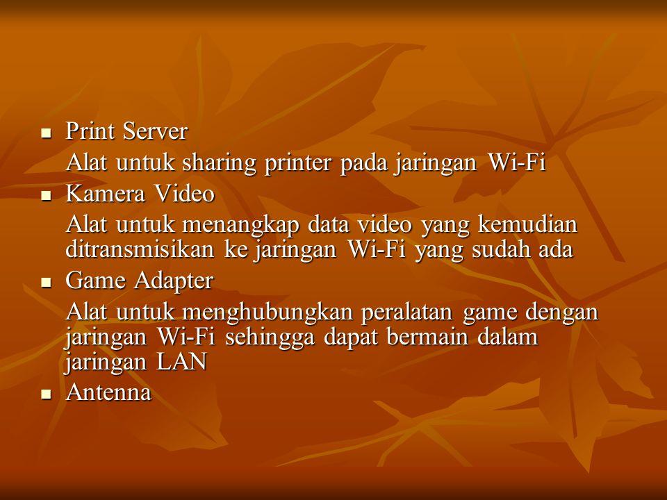Print Server Alat untuk sharing printer pada jaringan Wi-Fi. Kamera Video.