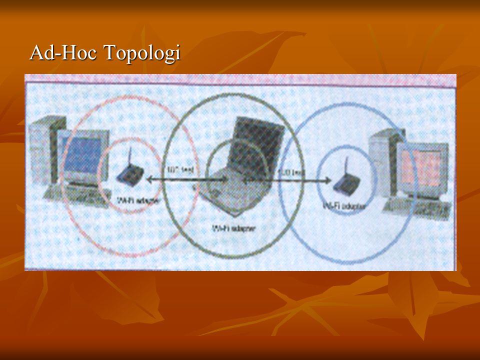 Ad-Hoc Topologi