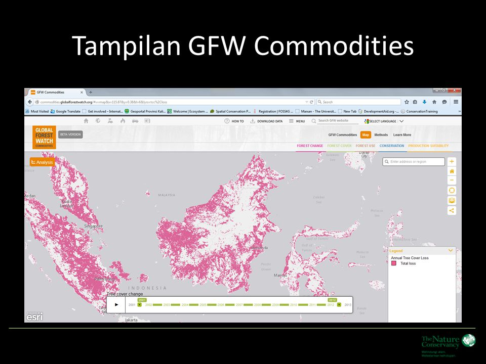 Tampilan GFW Commodities