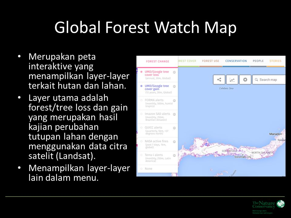 Global Forest Watch Map