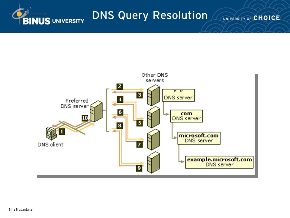 DNS Query Resolution Bina Nusantara