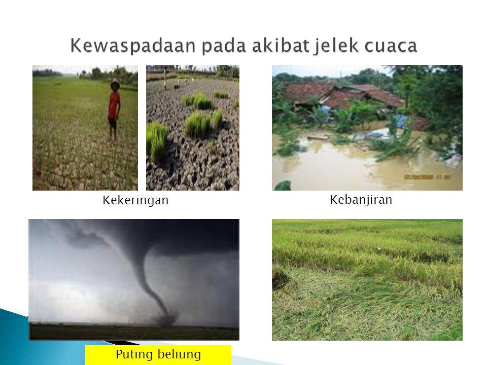 Kewaspadaan pada akibat jelek cuaca