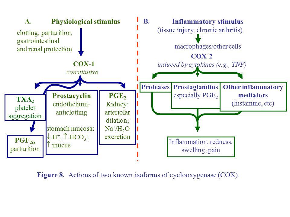 Inflammatory stimulus